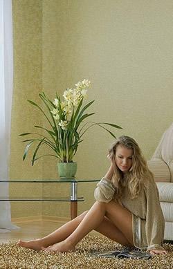 Unifarben Tapeten von Profhome - Modern und zeitlos zugleich. Tapeten einfach online kaufen!